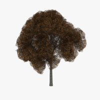 3ds white oak tree