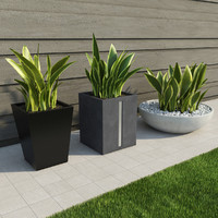 indoor outdoor plants 3d obj