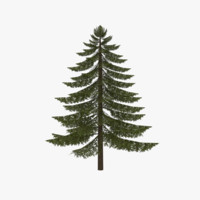3d 3ds fir tree