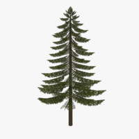 fir tree 3d 3ds