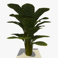 3d ready ground plant 7