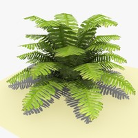 ready ground plant kimberly 3d c4d