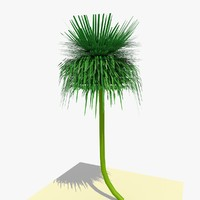 ready yucca plant 1 3d model