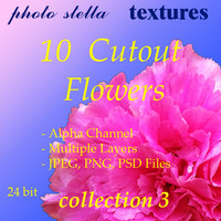 flower collection 3