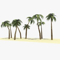 3d 3ds ready palm tree 1