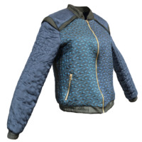blue gold jacket s 3d obj