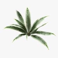 maya asset polys green