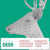 3d base mesh deer model