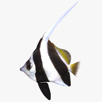 longfin fish 3d 3ds