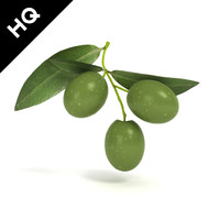3ds max olive