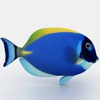 blue fish 3d model