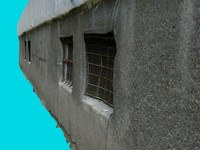 free max mode scans facade 5 -