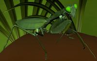 3d mantis rigged high-quality scene
