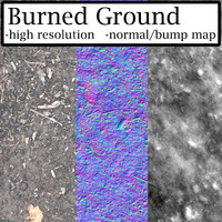 Burned Ground
