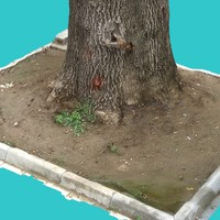 3ds max tree trunk 4
