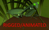 3d ma mantis rigged animations