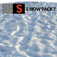 snow 7 3d model