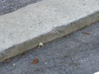 3d curb 3