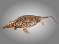 3d ichthyosaurus skeleton bones model