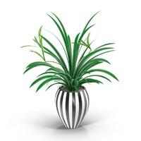 houseplant 3d max