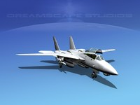 3d model of grumman f-14-d tomcat fighter aircraft