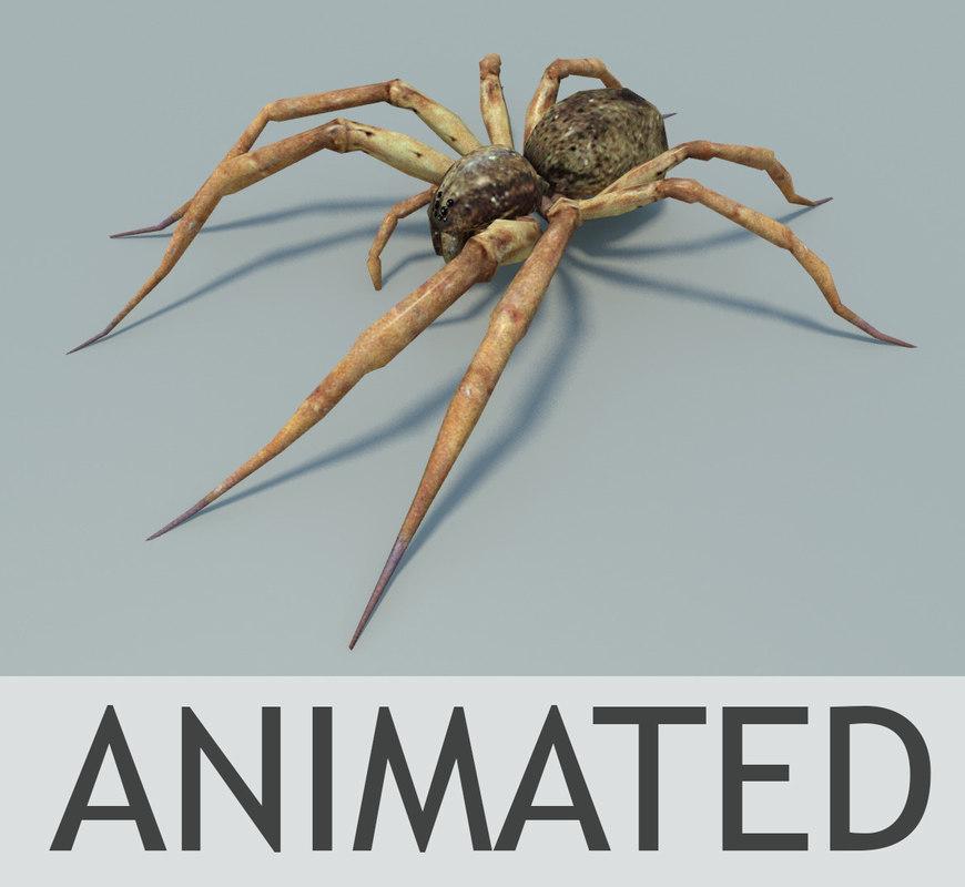 Spiderscreen3.jpg