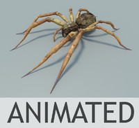 fishing spider animation obj