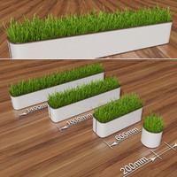 3d max decorative grass pot
