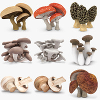 3d model mushrooms set