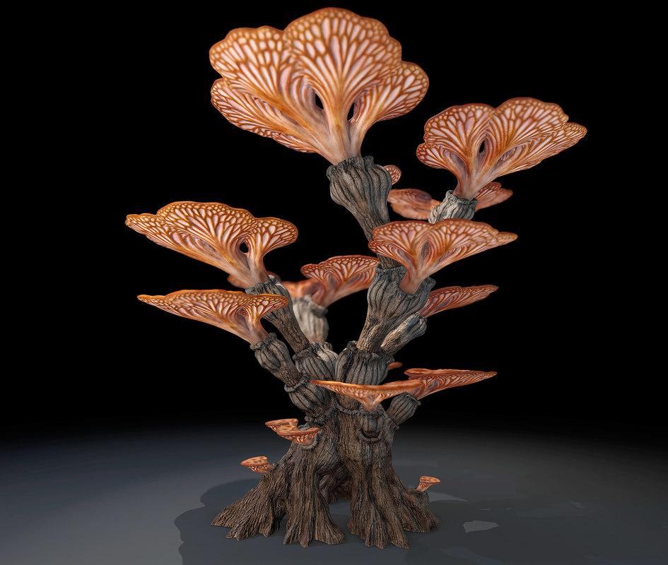 Alien plants-1.jpg