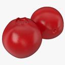 lingonberry 3D models