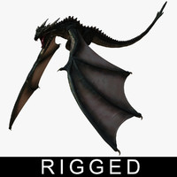 dragon rigged