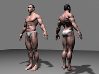 3d obj man anatomy
