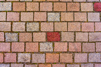 Tex Maashaven Noord Brick Street 1