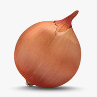 3d onion used