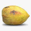 papaya 3D models
