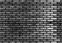 Tex Blaak Brick Wall  Tilable Specular