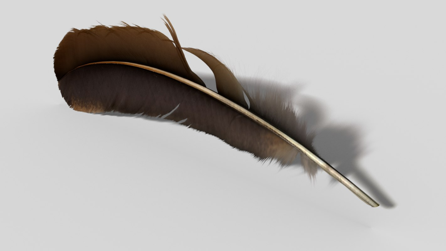 featherrend.png