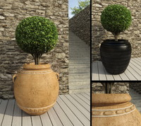 3d max boxwood pot