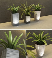 3d model plants indoor outdoor vi