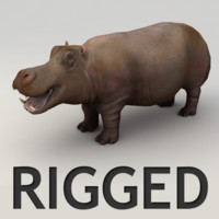 hippo rigged max