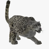 3d snow leopard pose 1 model