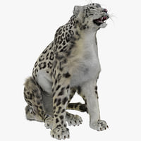 3ds max snow leopard pose