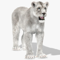 3ds max lioness white fur