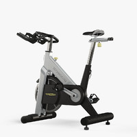 maya technogym bike