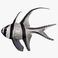 banggai cardinalfish 3d 3ds
