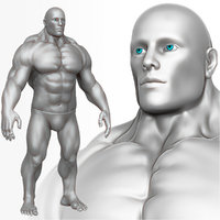 athletic anatomy male 3d obj