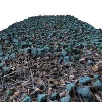 terrain - ivy 2 3d max