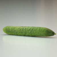 maya cucumber food