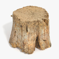 Big Round Log